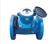 Woltmann Cold Water Meter